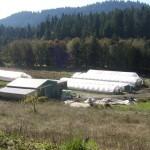 Hayhurst valley Organic Farm